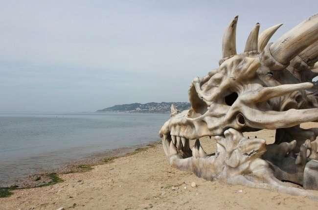 Обнаружен огромный череп динозавра на пляжу в Англии (9 фото)
