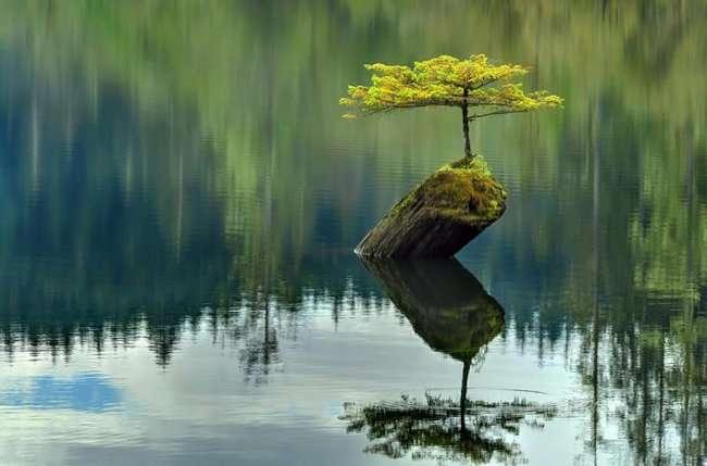 Безграничная сила природы (25 фото)