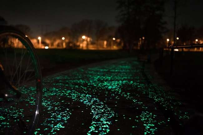 Светящаяся велосипедная дорожка (8 фото)