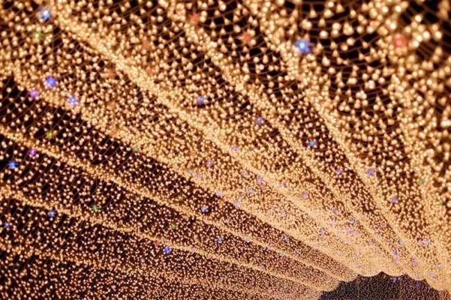 Зимний фестиваль света в Японии (7 фото)