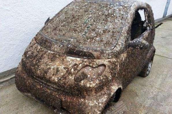 На eBay продали Smart пролежавший в море 7 лет (7 фото)