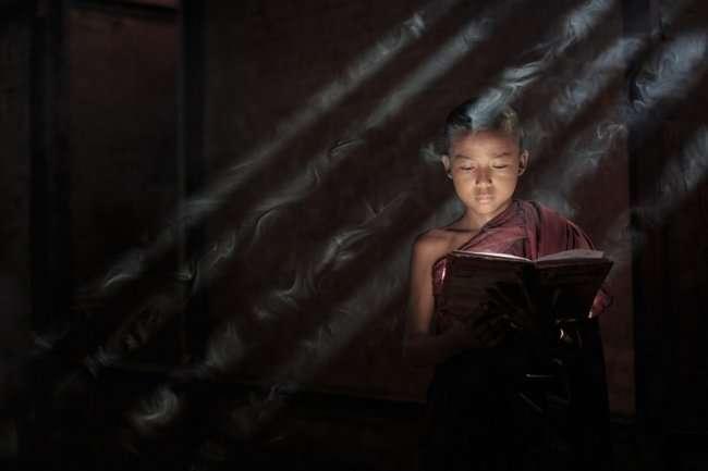 Фотоконкурс Sony World Photography Awards (15 фото)