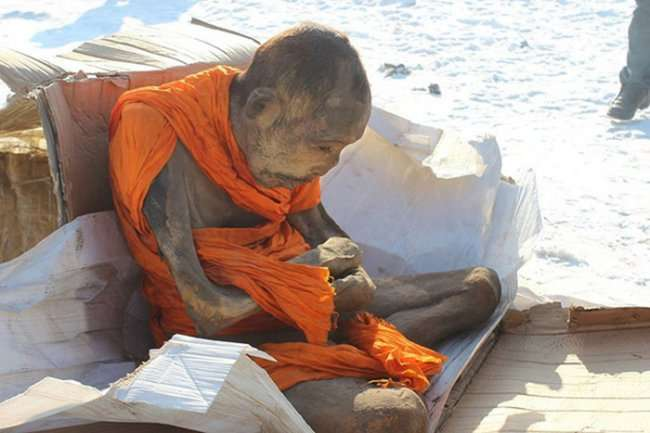 200-летняя живая мумия (3 фото)