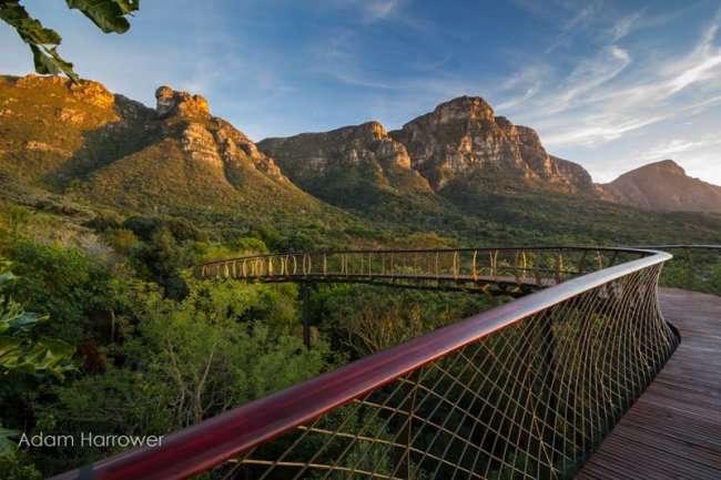 Дорога над заповедником в Кейптауне (12 фото)