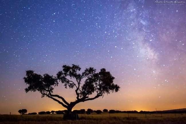 Заповедник звёздного неба в Португалии (8 фото)