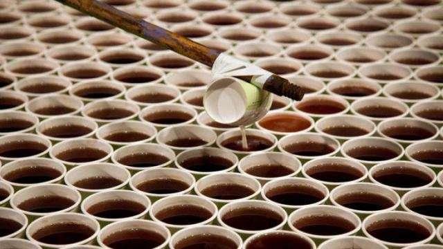 Самая большая мозаика из стаканчиков с водой (4 фото)