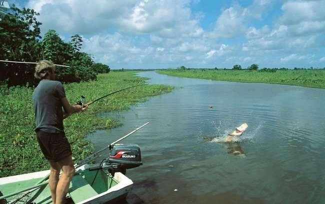 Интересные факты о рыбалке (9 фото)