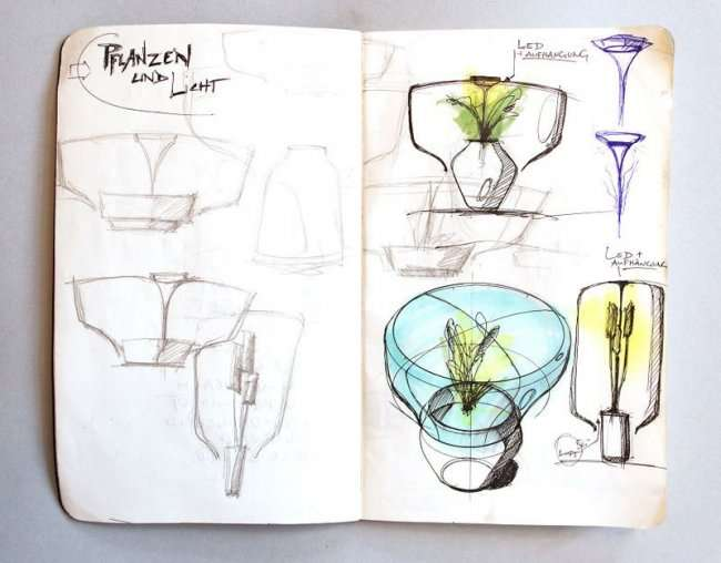 Растение-лампа, не требующее никакого ухода за собой (7 фото)