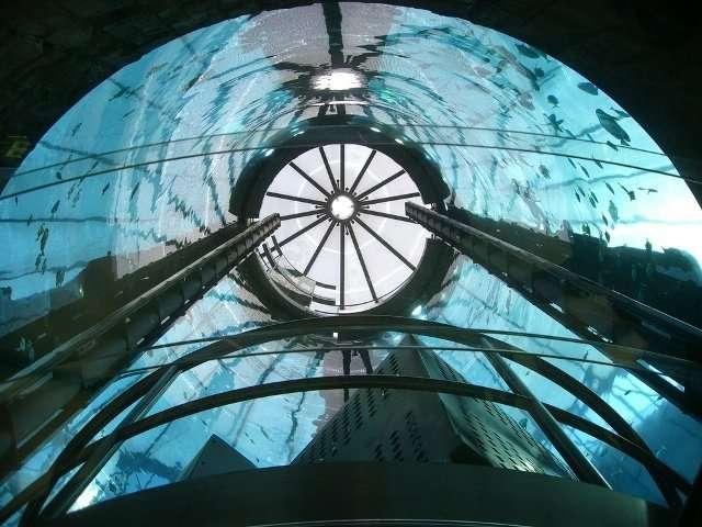 Интересные факты о лифтах (часть 3) (15 фото + 4 видео)