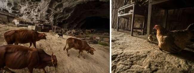 Деревня в пещере с сотней жителей, школой и баскетбольной площадкой