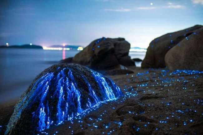 Слезы скал в ночной Японии (9 фото)