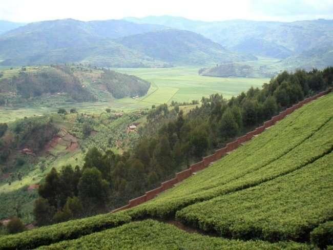 Руанда - страна тысячи гор (3 фото)