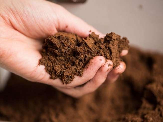 Устройство от Whirlpool, которое перерабатывает еду и превращает в удобрение (9 фото + видео)